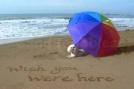beach wish